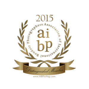 AIBP Distingquished Member Seal 2015 (1)